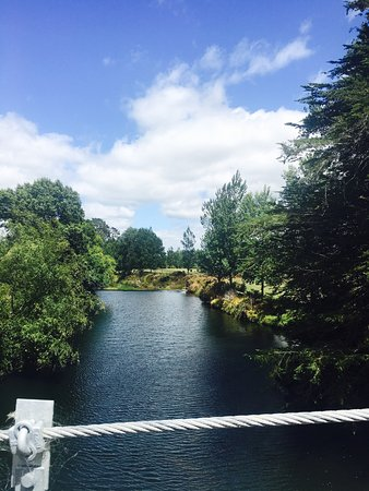 Paeroa, New Zealand: photo0.jpg