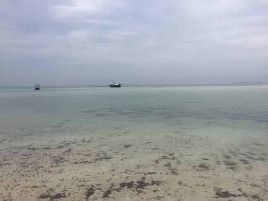 Diani Sea Lodge: Very clear water
