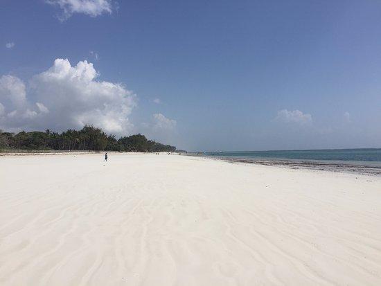 Diani Sea Lodge: Stunning beach for walks