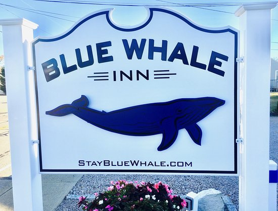 Blue Whale Inn: BWI