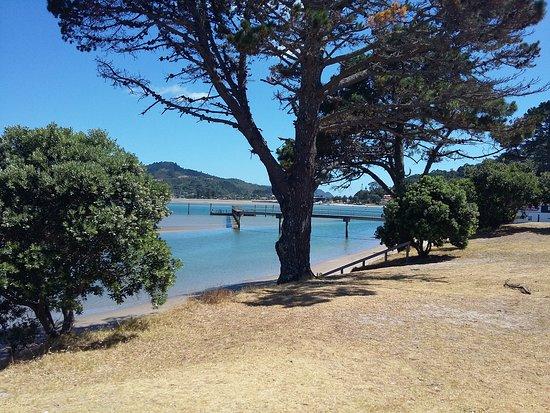 Pauanui, Yeni Zelanda: 20170127_112739_large.jpg