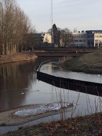 Natuurgebied Hammerveld-Oost