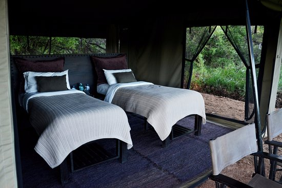 Wilderness Camp