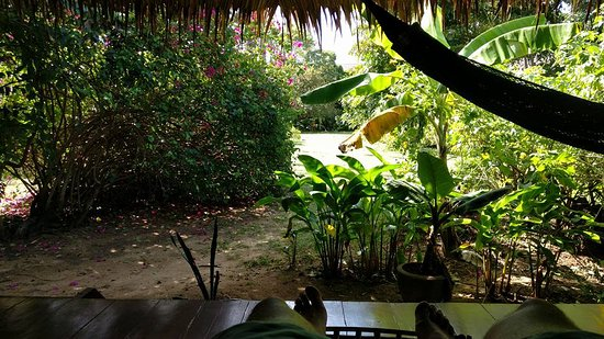 The Andaman Sunflower Resort & Spa: Beautiful view from our bungalow.
