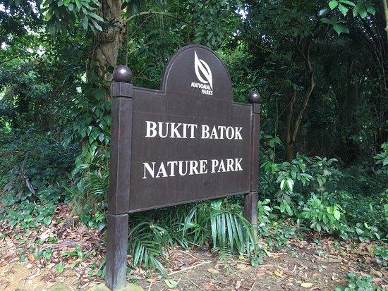 Bukit Batok Memorial Site: 自然公园