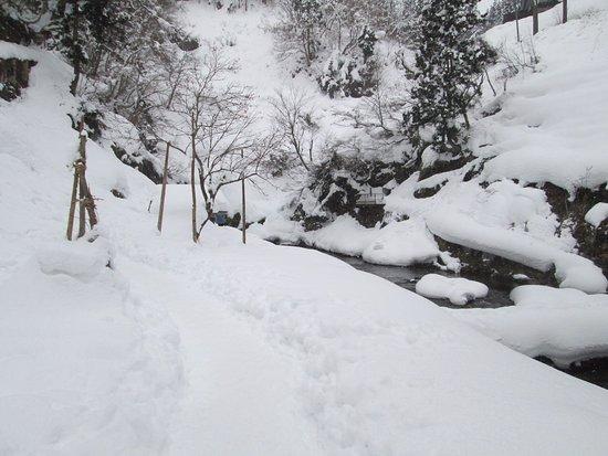 Shirogane Park : 雪に埋もれた公園
