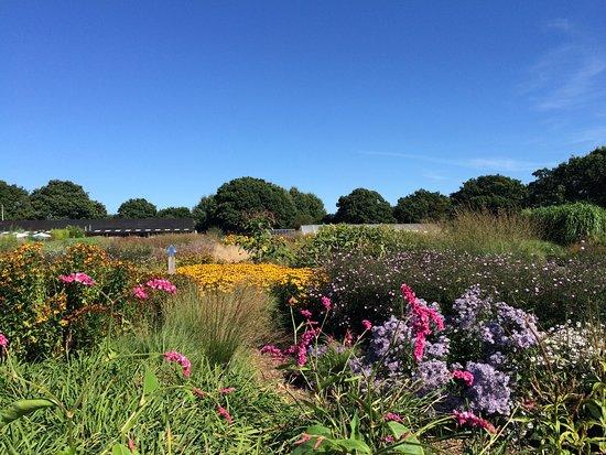 Henfield, UK: photo6.jpg