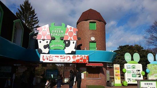 Ikaho Green Farm