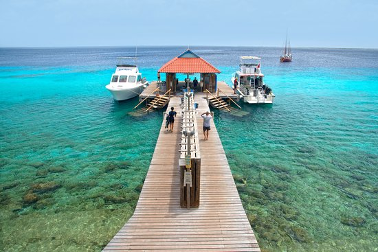 Divi Flamingo Beach Resort And Updated 2018 Reviews Price Comparison Bonaire Kralendijk Tripadvisor