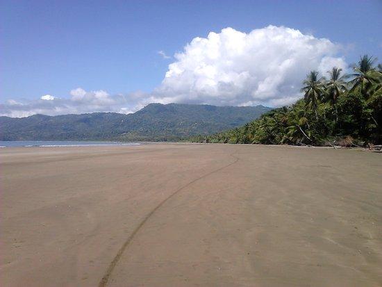 Provincia di Puntarenas, Costa Rica: ...und hier Kilometer weiter nördlich