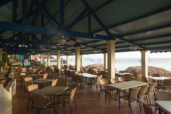 Divi dive bonaire dive shop foto van divi flamingo beach resort casino kralendijk tripadvisor - Dive e divi ...