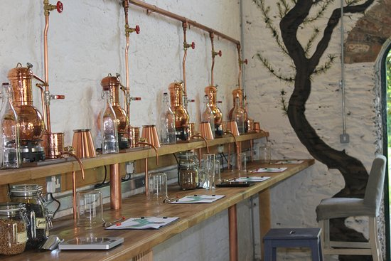 Drogheda, Irland: Listoke Gin school .....