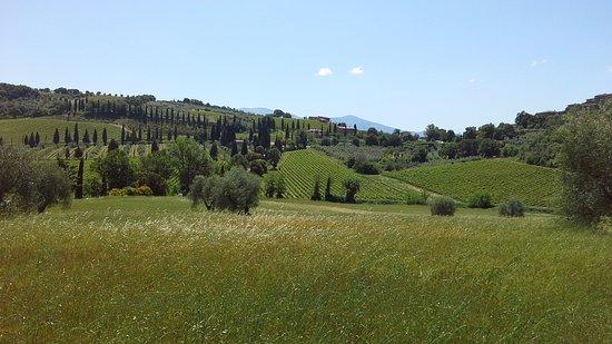 3RD Service: Tuscany Landscape