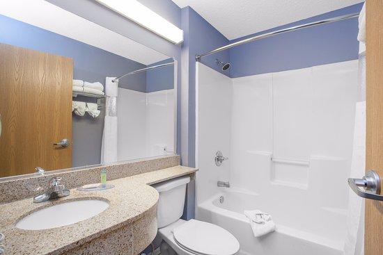 Microtel Inn & Suites by Wyndham Dover : Standard Bathroom