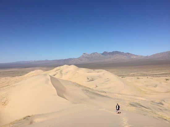Essex, Kaliforniya: Halfway up the dunes!