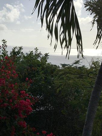 Virgin Islands Campground لوحة