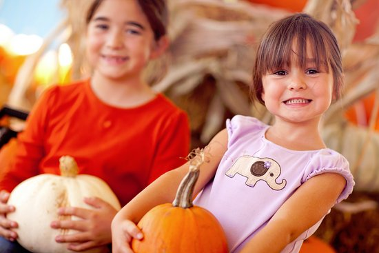 Eagleville, TN: Fall visitors Pick a Pumpkin!