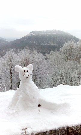 Annweiler am Trifels, Alemania: Schneekatze