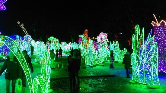 תוצאת תמונה עבור wilanow palace lights
