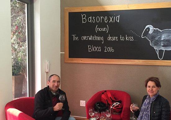 Hermanus, Güney Afrika: Dean and Zunette owners of GoBike enjoying eBike wine tour