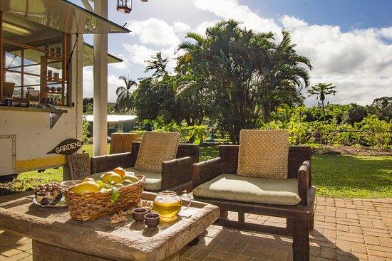 Kilauea, Hawái: Tea Lanai