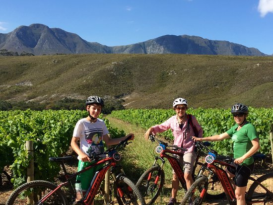 Hermanus, Sør-Afrika: Mtb tours on eBikes (electric bicycles)