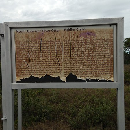 Upper Tampa Bay Park: One of the weathered information panel