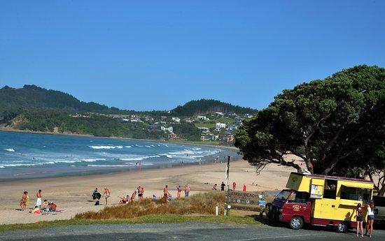 Waipu, Νέα Ζηλανδία: Zippy 1 posing for a photo shoot on Langs Beach.