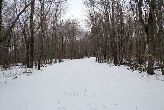 Lanesboro, MA: Snow Covered Roads