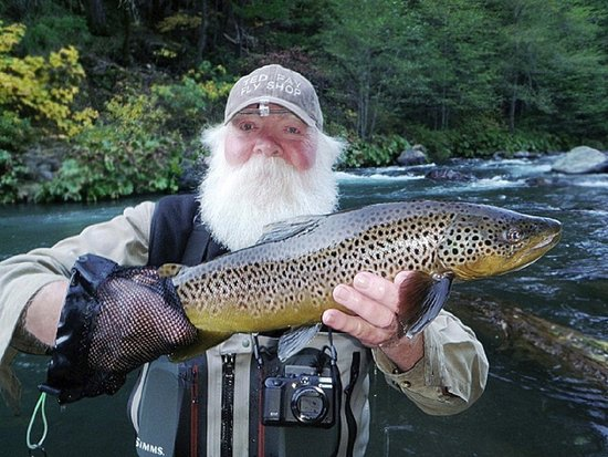 McCloud Brown Trout