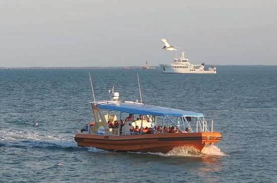 1-Hour Darwin Harbour Adventure Cruise