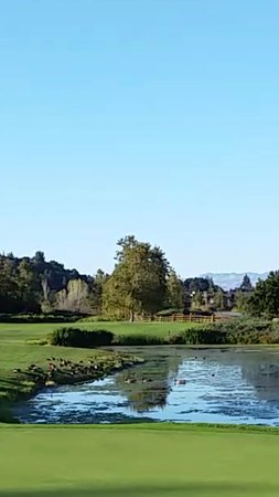 San Rafael, CA: Eagle Vines Golf Course in Napa, nestled in between Highway 29 and vineyards of Chardonnay Golf