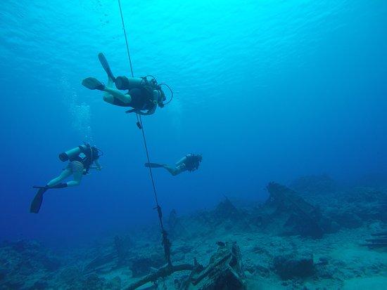 Dive Rarotonga: Just hanging around!