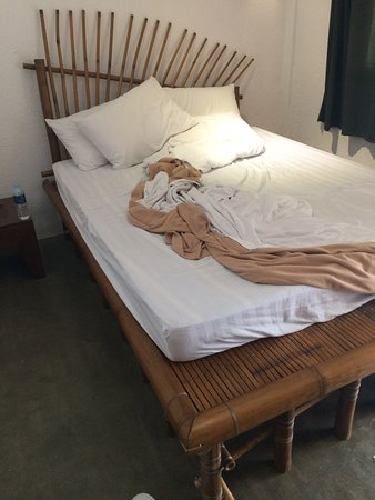 Lazy Dog Bed & Breakfast: The b(A|E)d ... pick any