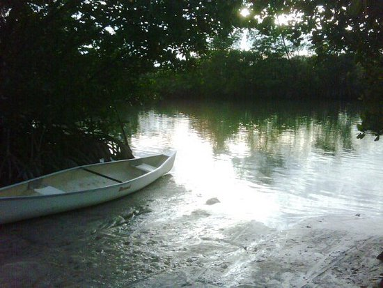 North Miami Beach, FL: Canoe parked in a secluded corner