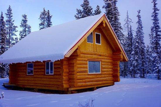 Log cabin picture of wheaton river wilderness retreat for Log cabin retreat