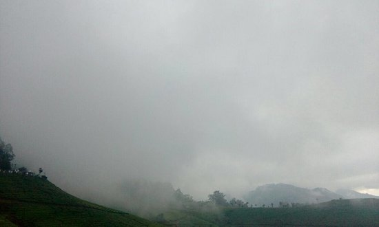 The best property in Munnar