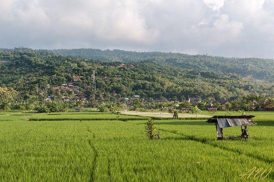 Temukus, Indonesia: Auf der anderen Strassenseite