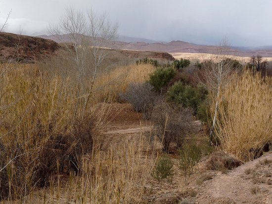 El Kelaa, Marruecos: dans la vallée