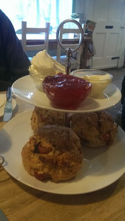 Steyning, UK: Delicious warm plum scones with homemade jam
