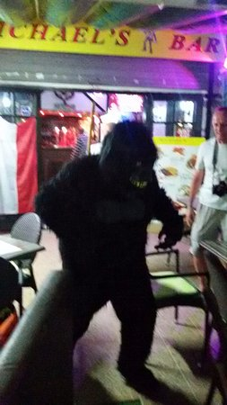 Michael By The Sea: Meet our famous gorilla at Michael's Bar and Food
