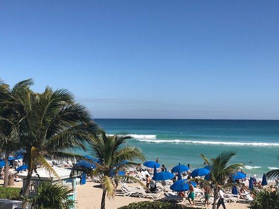 Sunny Isles Beach, FL: photo4.jpg