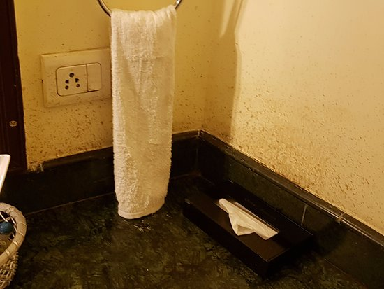 Qutub Residency: Dampness on walls