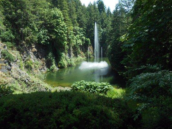Butchart Gardens: Dancing fountain