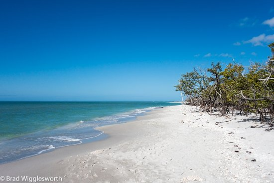Castaways Cottages of Sanibel: Just a couple of hundred yards across from the Bay is this beach. Turn left and it's all yours.