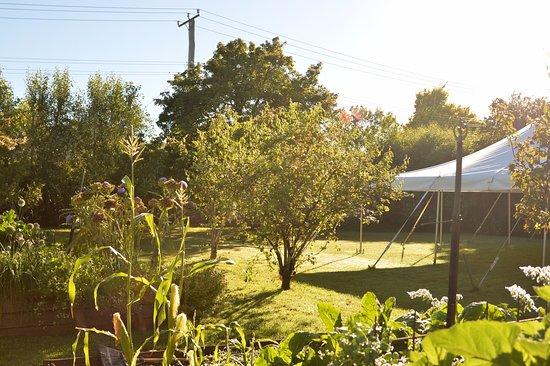 Hadspen, Australia: 芝生庭園、果樹園、菜園などが