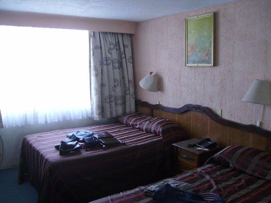 Plaza Madrid: Vista geral do quarto. Camas muito confortáveis e cortina black-out. Ponto posivo