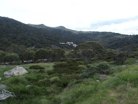 Thredbo Village, Australien: view