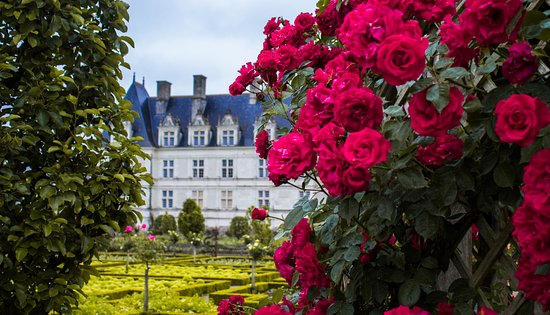 Chateau de Villandry: Giardini e castello di Villandry
