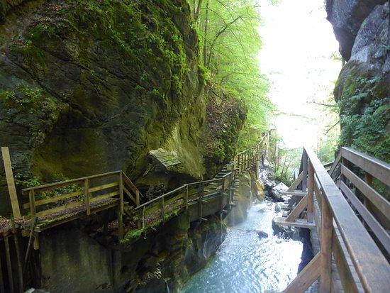 Naturdenkmal Seisenbergklamm